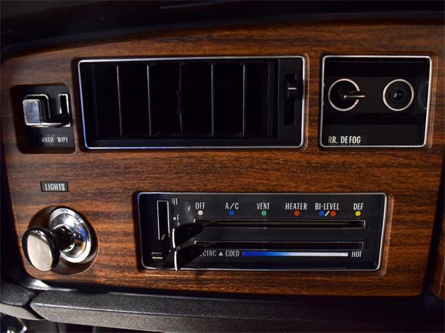 1973 Buick Electra 225 - Electra 225 (45)