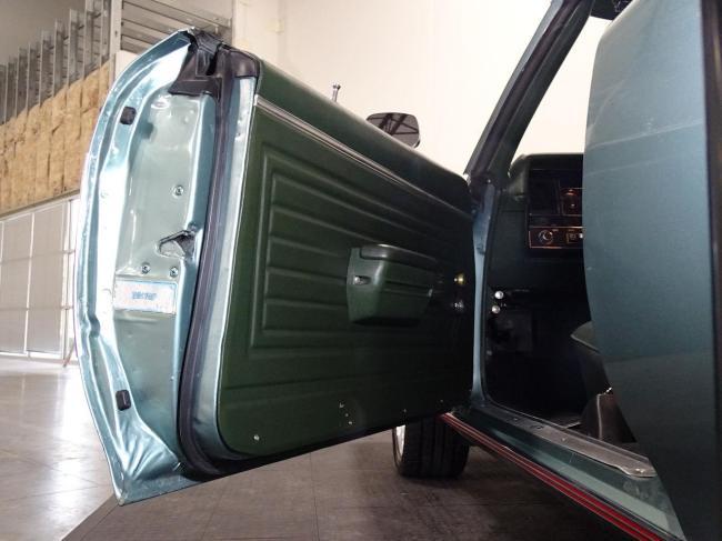 1971 Buick Skylark - Skylark (53)