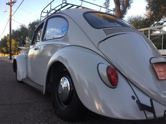 1966 Volkswagen Beetle in gilbert, Arizona