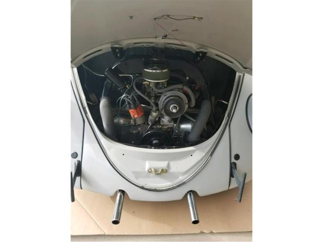 1966 Volkswagen Beetle - Beetle (5)