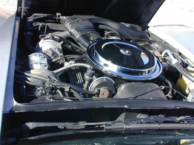 1980 Chevrolet Corvette - 1980 (30)