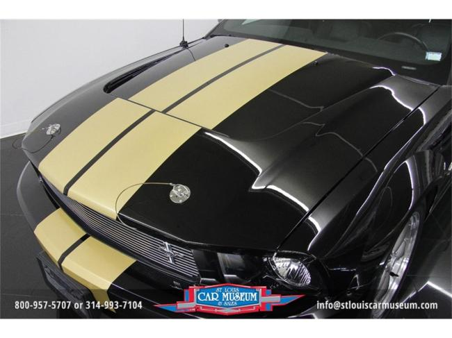 2006 Shelby Mustang GT-H - Mustang GT-H (8)