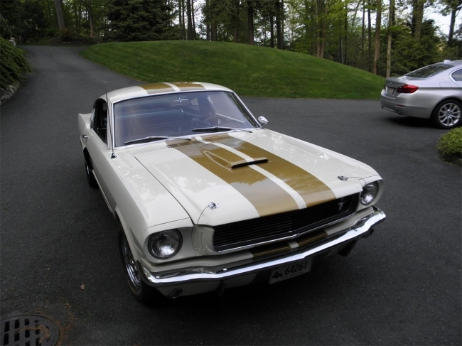 1966 Shelby Mustang in Middlebury, Connecticut