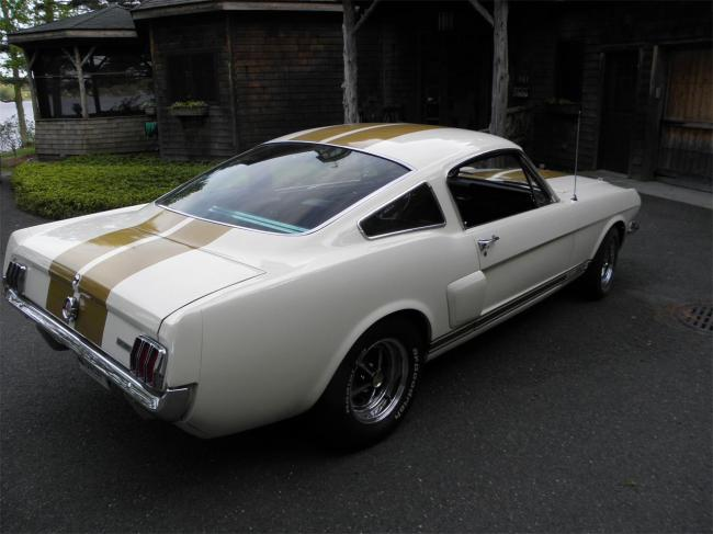 1966 Shelby Mustang - Shelby (1)