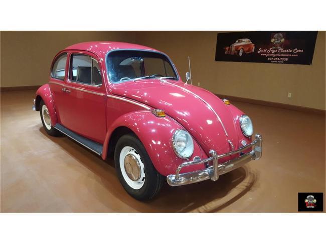 1966 Volkswagen Beetle - Florida (1)