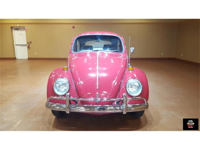 1966 Volkswagen Beetle - Beetle (2)