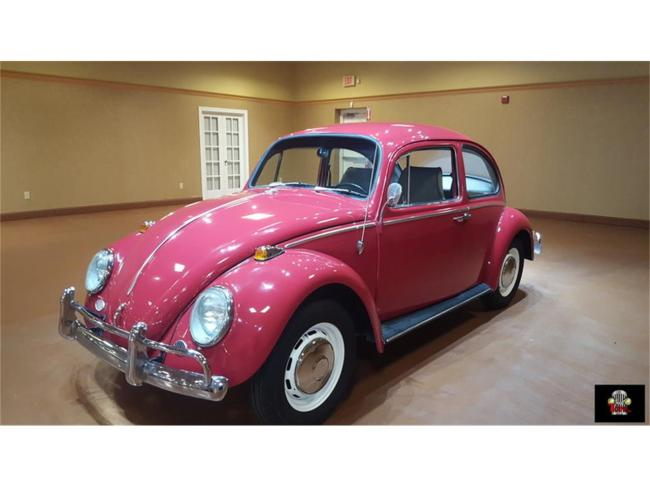 1966 Volkswagen Beetle - Beetle (3)