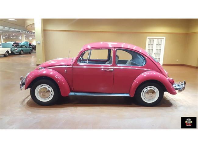 1966 Volkswagen Beetle - Beetle (4)