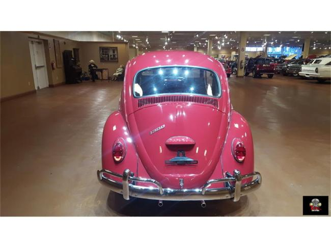 1966 Volkswagen Beetle - Manual (6)