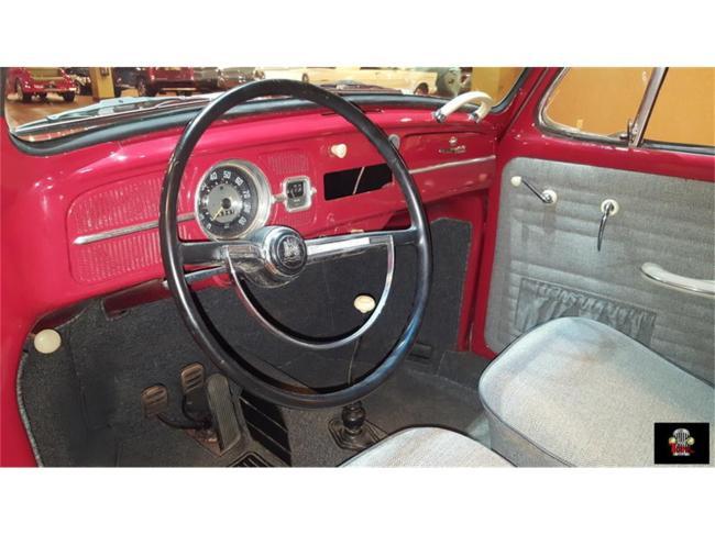 1966 Volkswagen Beetle - Florida (21)