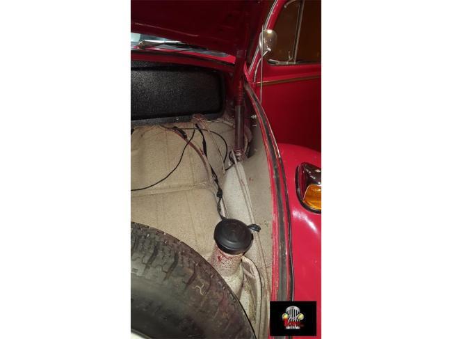 1966 Volkswagen Beetle - Volkswagen (44)