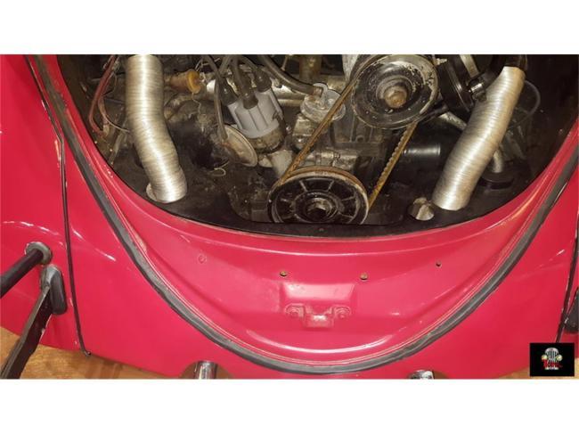 1966 Volkswagen Beetle - Volkswagen (48)