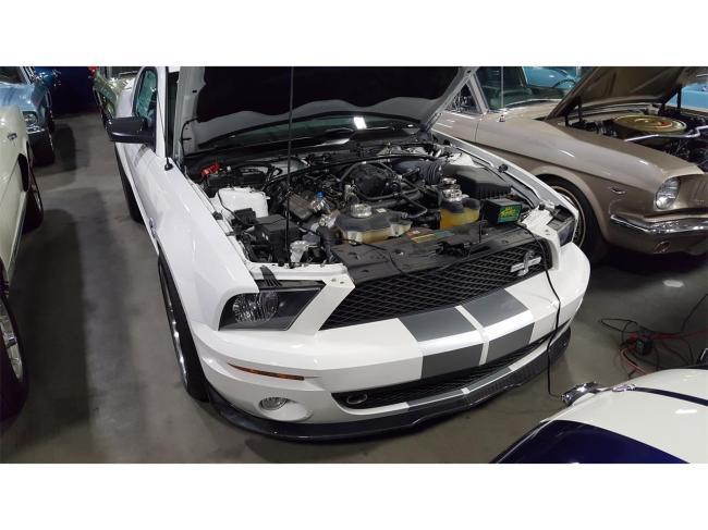 2007 Shelby GT500 - California (8)