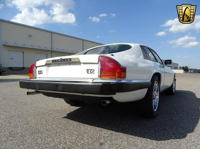 1989 Jaguar XJS - 1989 (6)
