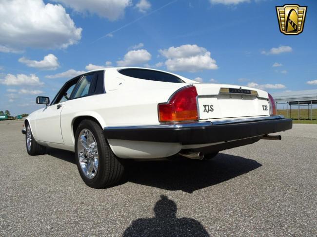 1989 Jaguar XJS - XJS (8)