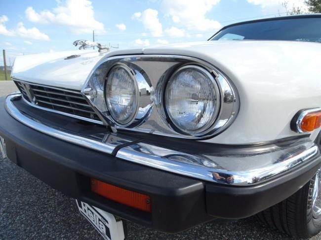 1989 Jaguar XJS - XJS (15)
