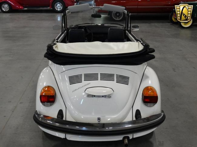 1978 Volkswagen Beetle - Volkswagen (20)