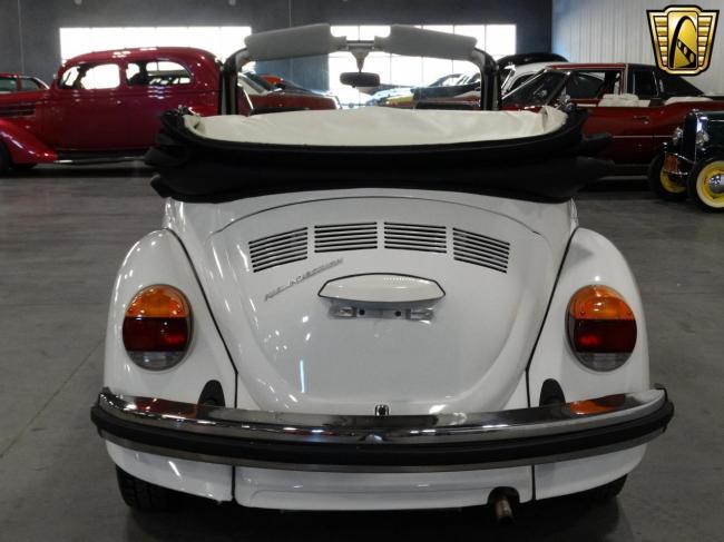1978 Volkswagen Beetle - Beetle (21)