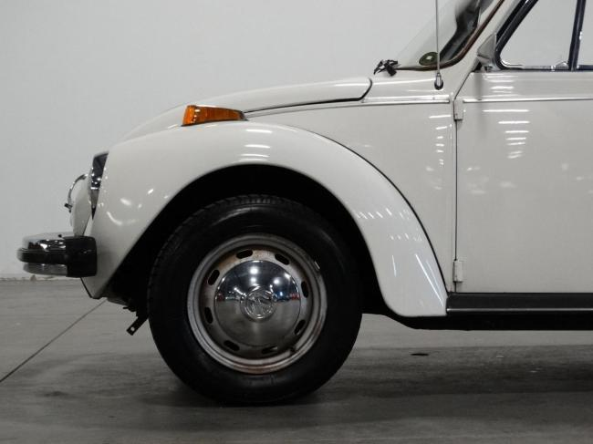 1978 Volkswagen Beetle - 1978 (26)