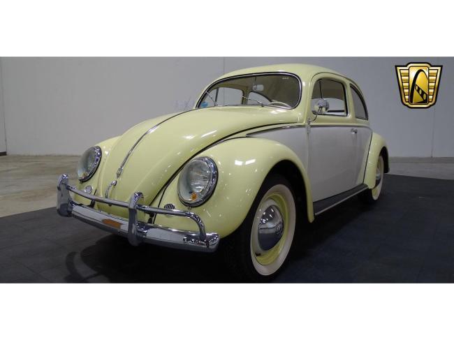 1957 Volkswagen Beetle - 1957 (2)
