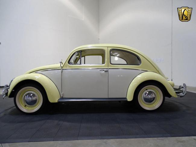 1957 Volkswagen Beetle - Texas (4)