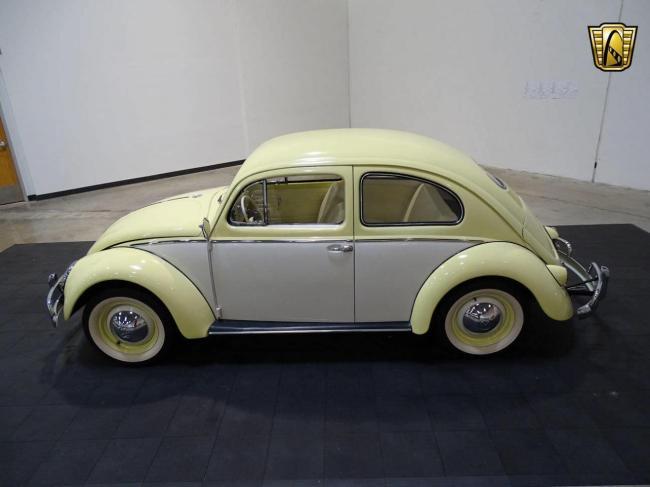 1957 Volkswagen Beetle - 1957 (6)