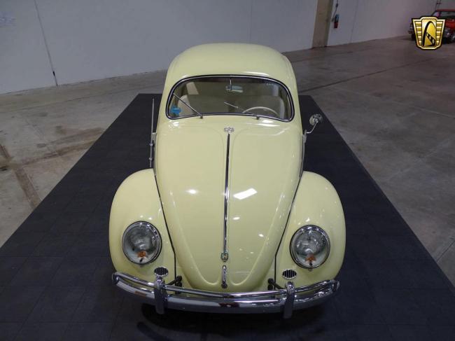 1957 Volkswagen Beetle - Beetle (14)
