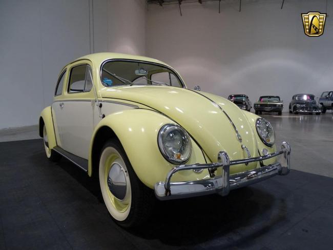 1957 Volkswagen Beetle - Volkswagen (16)