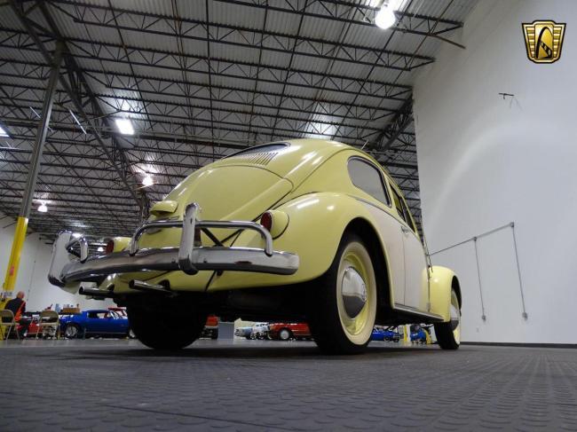 1957 Volkswagen Beetle - Beetle (21)