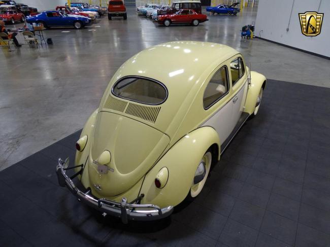 1957 Volkswagen Beetle - Volkswagen (23)
