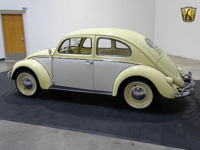 1957 Volkswagen Beetle - Beetle (30)
