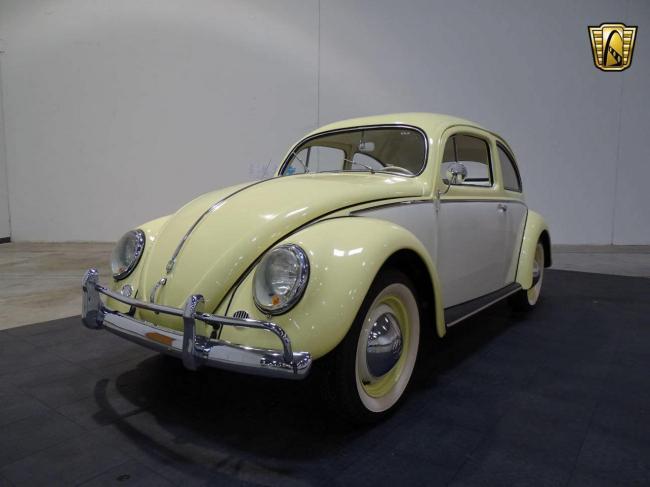 1957 Volkswagen Beetle - Beetle (31)