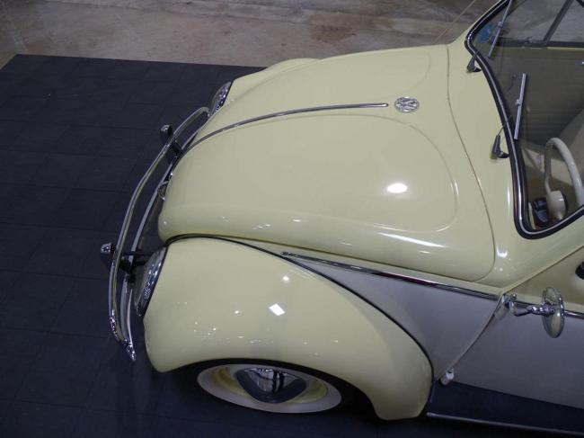 1957 Volkswagen Beetle - Beetle (42)