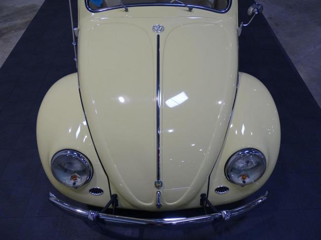 1957 Volkswagen Beetle - Texas (43)