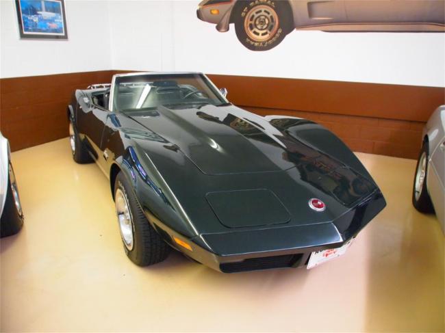 1974 Chevrolet Corvette - Corvette (47)