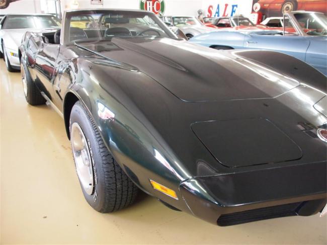 1974 Chevrolet Corvette - Corvette (72)