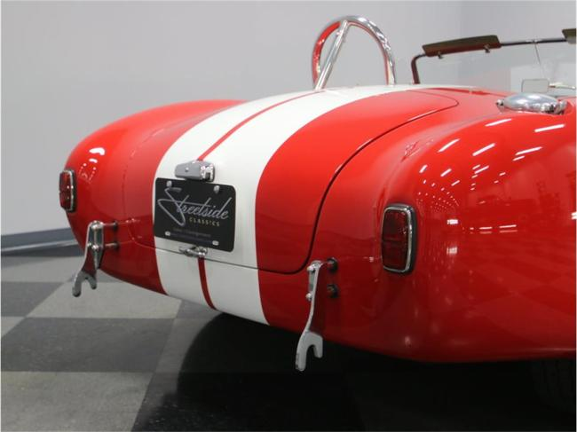 1965 Shelby Cobra - Cobra (22)
