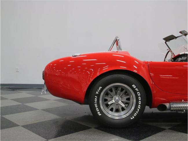 1965 Shelby Cobra - Cobra (26)