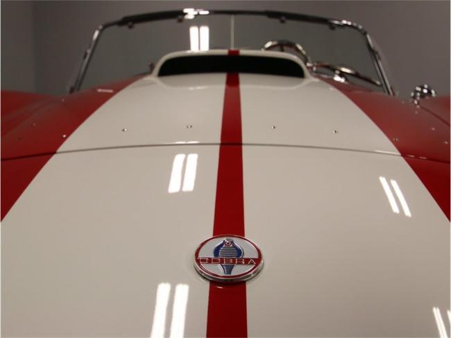 1965 Shelby Cobra - 1965 (76)