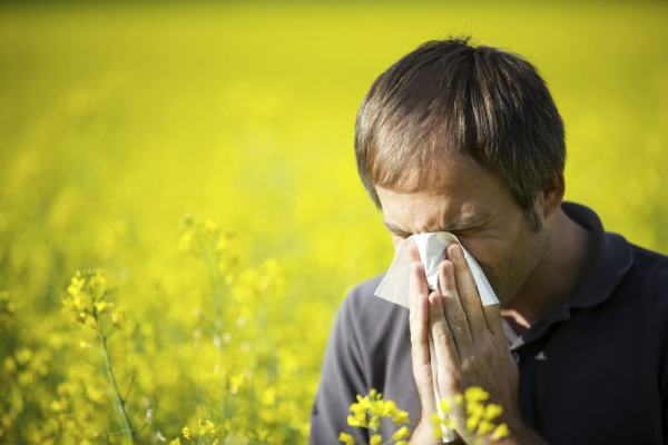 Manage your allergy symptoms with a pollen forecast at pollen.com