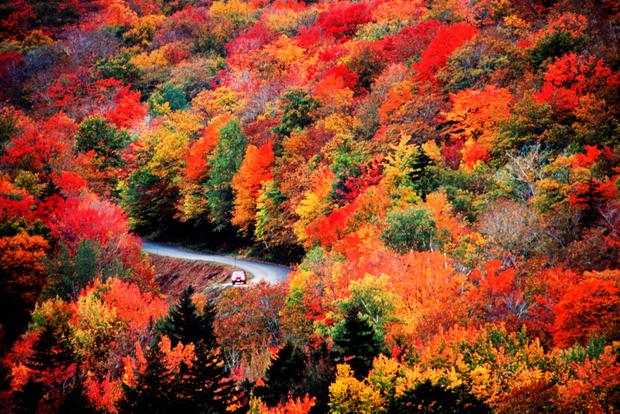Discovery Channel Hd Wallpapers New England S Fall Foliage The Ultimate Guide For Irish