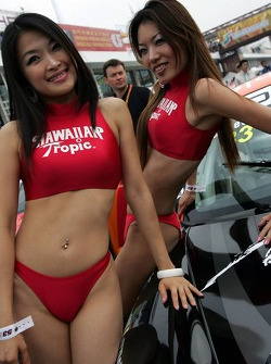 Hawaiian Tropic Girl Wallpaper Macau Gp Live Wtcc Racing