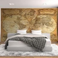 Vintage Hemisphere Map Wall Mural