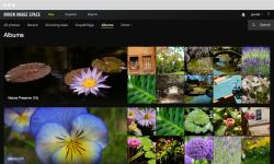 Dazzling Arranging Your Explore Benefits Creating Albums Intuitive Interfacesand Options Nikon Image Space Browse Organize Until Your Content
