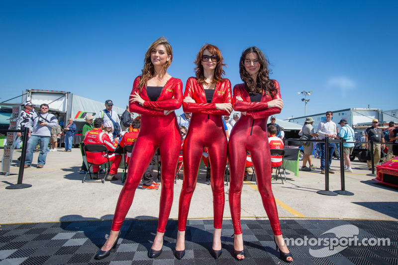 Monster Energy Girls Wallpaper Hd The Big Picture Best Of Grid Girls 2013