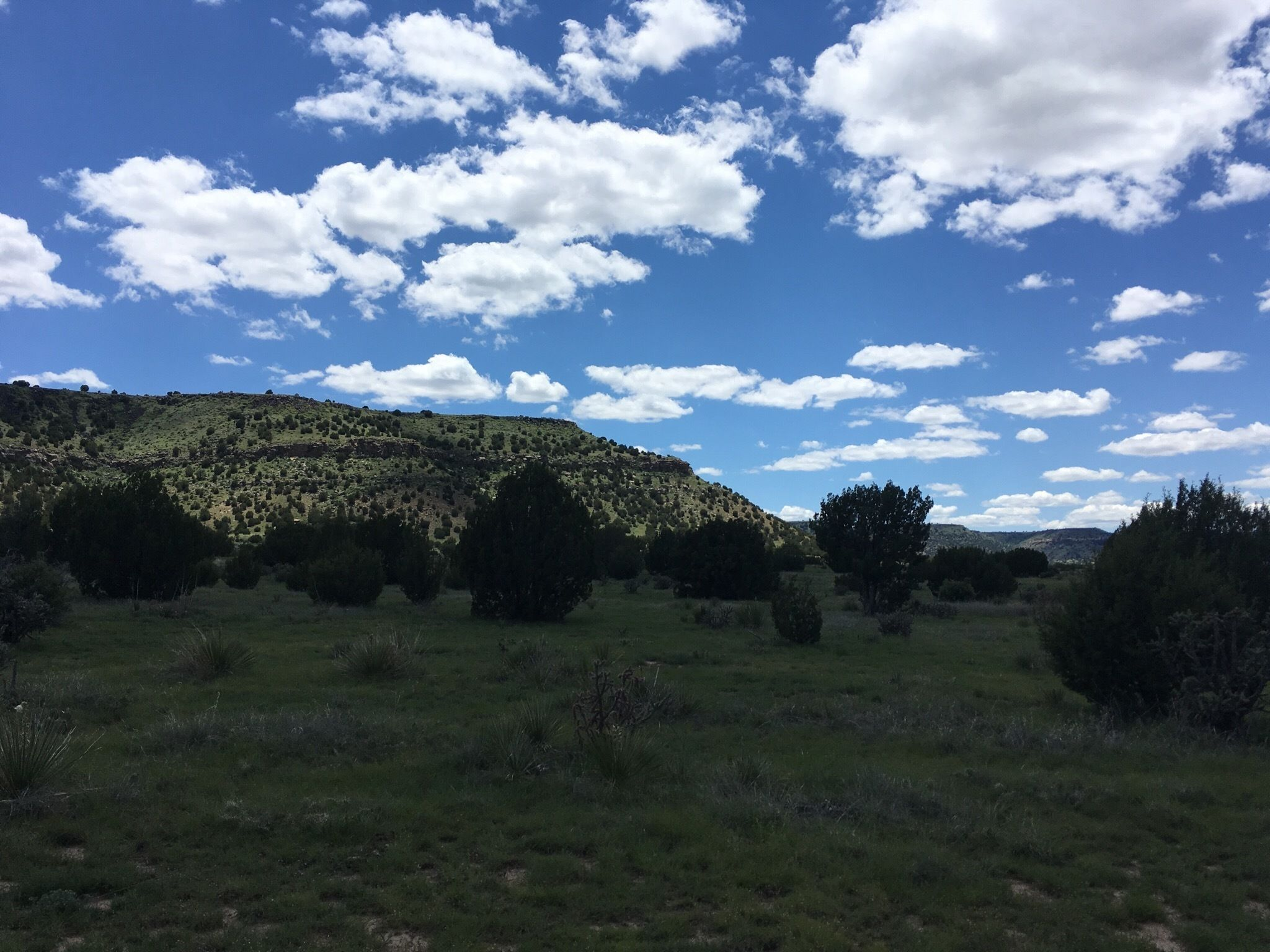 Black Mesa State Park Best Trails In Black Mesa State Park And Nature Preserve