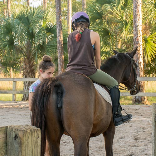 casperey stables