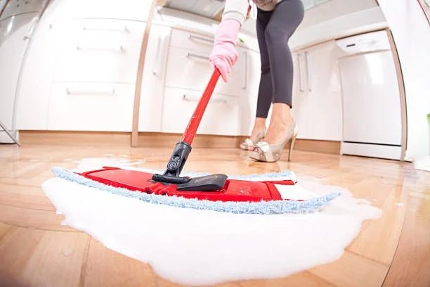 Picking the Best Domestic Cleaning Agency - Bestcleaningsolutionsbiz