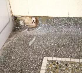 Terrazzo Floor Repair Needed Hometalk