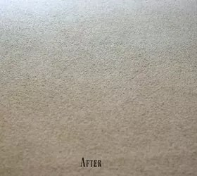 Easy Homemade Carpet Cleaner Only 3 Ingredients (And Why It Works